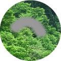 緑内障の視野障害のイメージ